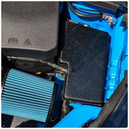 Cal Pony Cars Carbon Fiber Fuse Box Cover for the Ford Focus RS / ST