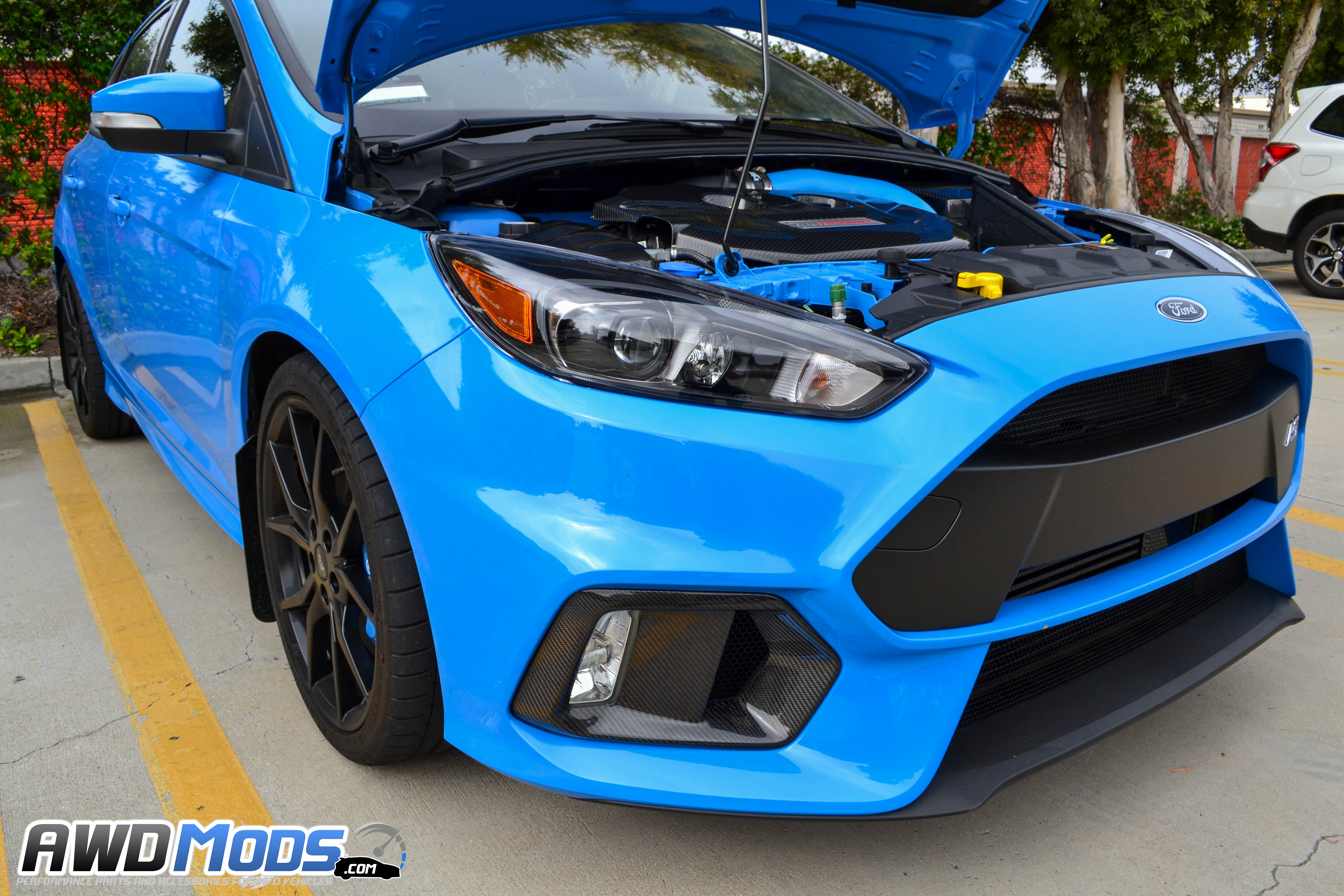 ford focus rs carbon fiber fog light bezel replacement. Black Bedroom Furniture Sets. Home Design Ideas